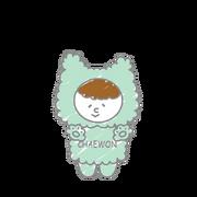 Chaewon Character.png