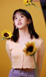 Oneiric Diary DIARY Behind Yujin2