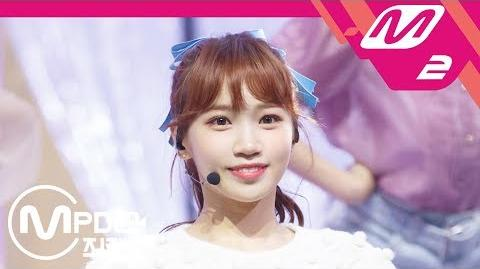 Chaewon/Fancams