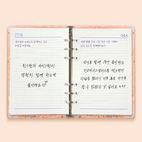 Hitomi's Diary3