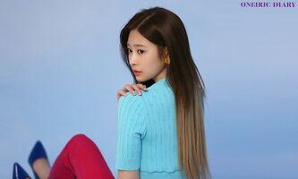 Oneiric Diary DIARY 2 Behind Minju