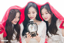 Naver x Dispatch Wonyoung with Umji and Arin 3
