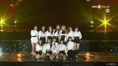 IZ*ONE Intro La Vie en Rose 28th Seoul Music Awards HD1080p 60fps (190115)