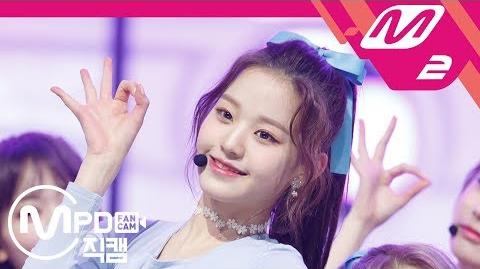 Wonyoung/Fancams