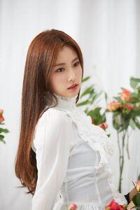 BTS Photo Shoot Hyewon