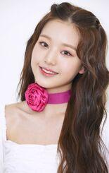 COLORIZ Photobook Color Ver Wonyoung 1