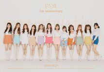 IZONE 1st Anniversary
