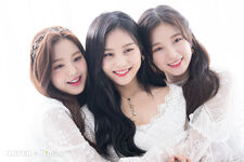 Naver x Dispatch Wonyoung with Umji and Arin 8