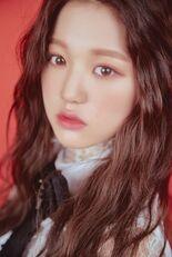 COLORIZ Photobook Rose Ver Wonyoung 4