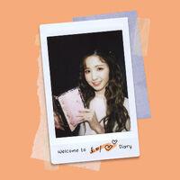 Hitomi's Diary