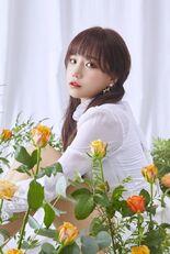 COLORIZ Photobook Rose Ver Yuri 1
