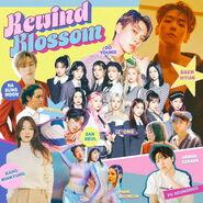 Rewind Blossom Cover