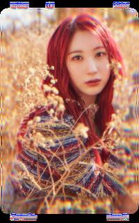 Chaeyeon Scene 1 Film