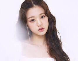 COLORIZ Photobook Color Ver Wonyoung 2