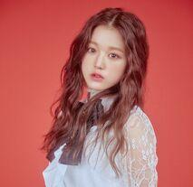 COLORIZ Photobook Rose Ver Wonyoung 5