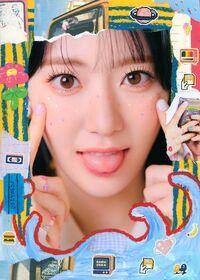 Sakura Oneiric Diary