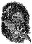 Летучие мыши. Илл. Виктора Бахтина