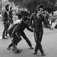 Japanese rockabilly 17