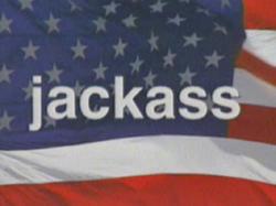 Jackass title card.png