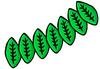 LeavesHeadband.png