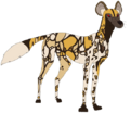 Natural Form African Wild Dog