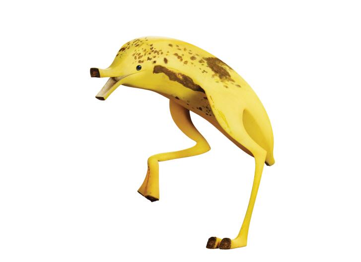 Bananostrich