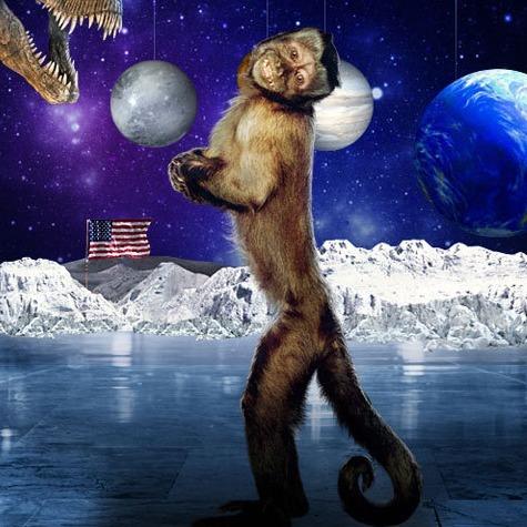 Dexter the Monkey