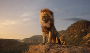 Mufasa and Simba 2019
