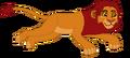 Simba (2)
