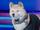 Bark (Pup Star)