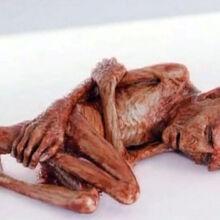 Voldemort's mutilated soul.jpg
