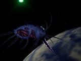 Dark Maker ship
