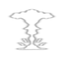 Super Nova racing weapon icon