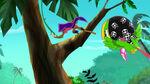 Zongo-Captain Jake's Pirate Power Crew!31