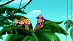 Zongo-The Monkey Pirate King10