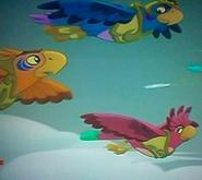 SwiftyTalon& Eagle Eye-Flight of the Feather02