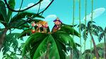 Zongo-The Monkey Pirate King11