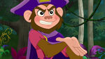 Zongo-The Monkey Pirate King14