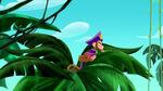 Zongo-The Monkey Pirate King09