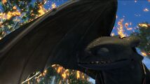 Toothless(86)