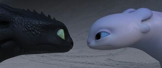 Toothless and light fury httyd3