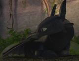 Toothless by xx nightfurygirl xx-d5e0jnj