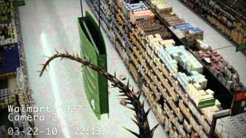 Dragons Caught on Walmart Cameras 3.mp4