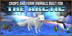 Icestorm-island-farm-animals