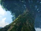 Árbol Madre