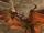 Gran Leonopteryx