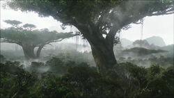 Hometree.jpg