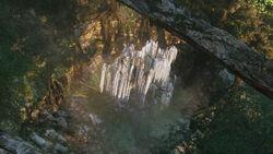 Tree of Souls.jpg