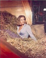 Pussy in Hay