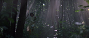 Corinne fuyant les dobermans